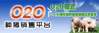 种猪O2O销售平台
