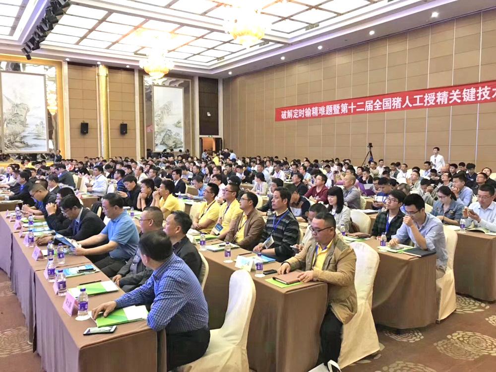第十二届AI会议会议盛况
